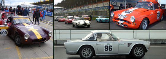 Other cars competing in the Historic Long Distance Cup